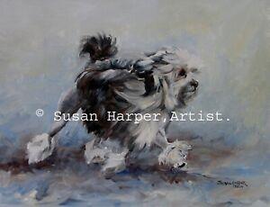 SALE Lowchen (Little Lion Dog) Signed Dog Print by Susan Harper Unmounted