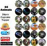 🏅24 Australian Animals Koala Kangaroo Wombat Edible Cake Cupcake Toppers Zoo