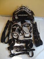 Black double horse Driving harness, patent material, With designer White Piepin.