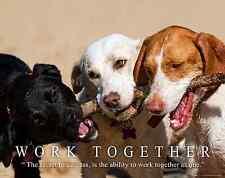 Dog Motivational Poster Art Print Work Together  Veterinarian Classroom MVP530