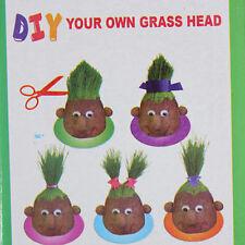 Indoor Home Grass-head Growing Ornamental Plant Grow Seed Garden P040
