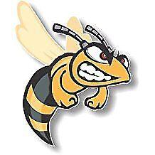 Vinyl sticker/decal Medium 120mm angry hornet - facing right