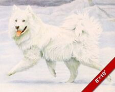 THE PLAYFUL SAMOYED HERDING SNOW SLEDDING DOG ART PAINTING PRINT ON REAL CANVAS