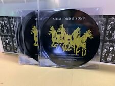 """MUMFORD & SONS PICTURE DISC 10"""" DELTA ACOUSTIC SESSIONS 26/07/2018  RSD 2019"""