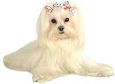 Spider Hair Bows Witch Cute Dress Up Halloween Pet Dog Cat Costume Accessory