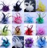 Women Bridal Feather Floral Hair Clip Fascinator Headband Headwear Accessories