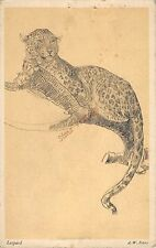 Animal Postcard Leopard  G0 016