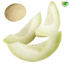 Melon Blanco de Ribatejo ( 80 semillas ) seeds - Melón