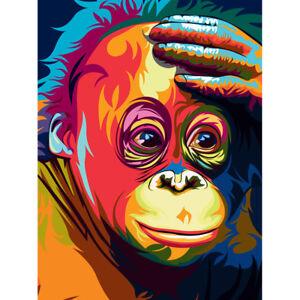 Orangutan Illustration Colourful Unframed Wall Art Print Poster Home Decor