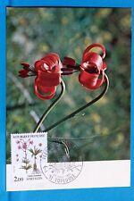 LYS DE MARTAGON FLEURS DE MONTAGNE FRANCE CPA Carte Postale Maximum  Yt 2267 C
