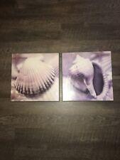 Set Of Two Beach Coast Decorative Pictures Sea Conch / Sea Shells