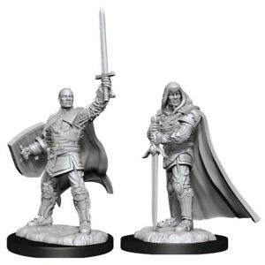D&D Unpainted Nolzur's Marvelous Miniatures Human Male Paladin WZK90136