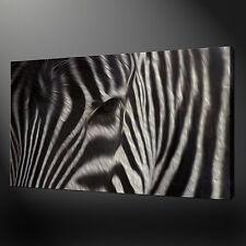 "ZEBRA ANIMAL WALL HANGING ART PICTURE PHOTO BOX CANVAS PRINT 20""x16"" FREE UK P&P"