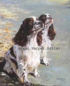 SALE English Springer Spaniel Signed Dog Print by Susan Harper Unmounted