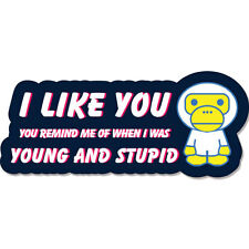 I like You - You Remind Me Of When I Was Young And Stupid Funny car bumper stick