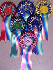 Rosettes New Rainbow ribbon 2 tier printed f.o.c.Dog Horse Party Children
