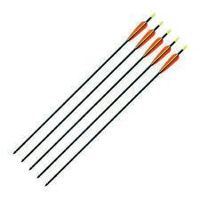 """ARMEX ARCHERY Carbon Arrows 30"""" Black (10/pcs) For Compound Or Recurve Bows"""