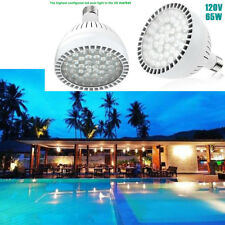 65W 120V Swimming Pool LED Light Bulb Daylight Lamp Replacement Pentair Hayward