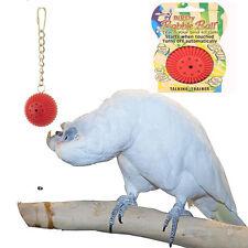 Papageienspielzeug ! Birdie Babble Ball -  Spielzeug für alle Vögel  !