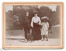 C340 Photographie originale vintage mode fashion chien dog parc