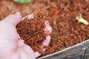Coco Peat  Coconut Fiber Organic Hydroponic Growing Media / For Exotic Pet