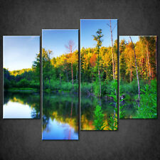 BEAVER POND IN FOREST CANVAS PRINT PICTURE WALL ART HOME DECOR FREE DELIVERY