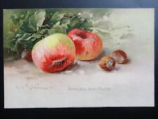 Greeting: Flowers and Fruit, Apples and Nuts, Pub by Raphael Tuck series No.4065