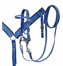 BLUE Nylon PONY Size Headstall and Felt Lined Breast Collar with Grazing Bit