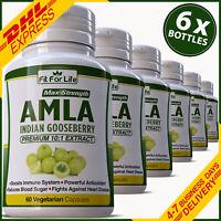 AMLA VITAMIN C BOOST IMMUNITY DEFENSE IMMUNE SUPPORT CAPSULES ANTIOXIDANT PILLS
