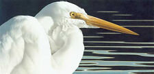Barbara Banthien Wildlife Print - 'Great Egret'