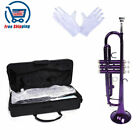 Best Student Trumpets - New Violet School Student Band Brass B Flat Review