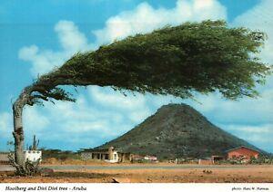Lot of 5 Postcards of Island of Aruba, Caribbean Netherlands Antilles - Postcard