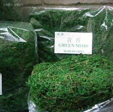10g/bag Keep Dry Real Green Moss Fake Decorative Plants Vase Artificial Turf