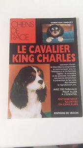 Le cavalier King Charles - Christian Limouzy