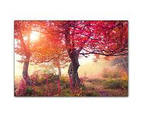 Naturbild auf Leinwand Wald Blüten rot Kunstdruck gerahmt XXL Druck Dekoration