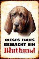 Hund Bluthund bewacht Haus Blechschild Schild gewölbt Metal Tin Sign 20 x 30 cm