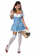 Secret Wishes Dorothy Ladies Fancy Dress Halloween Costume Size XS New
