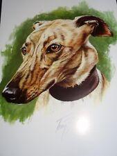 Lovely Greyhound Blank Greeting Card