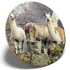 1 x  Awesome Llama Herd - Round Coaster Kitchen Student Kids Gift #8540