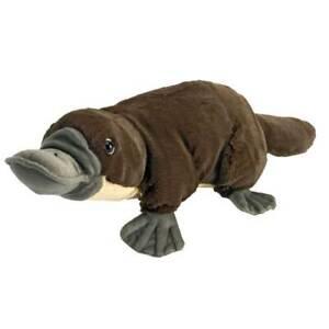 "Wild Republic Mini Cuddlekins Platypus 8"" Soft Plush Toy"