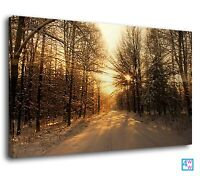 Winter Morning & Snow Covered Forest Road Canvas Print Wall Art Picture