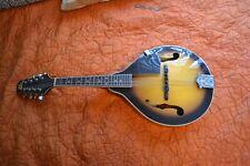 Rogue mandolin RM100A!!!