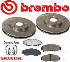 BREMBO Front Brake Rotors + Genuine Honda Pads Acura CL TL TSX Honda Accord NEW