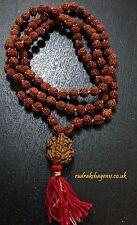 2 TWO MUKHI OM GURU BEAD RUDRAKSH JAPA MALA ROSARY 108 +1 BEAD YOGA MEDITATION