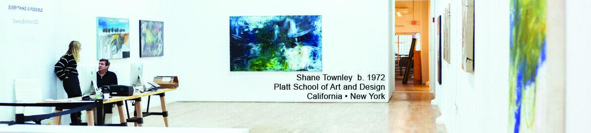 Shane Townley Artist Studio Direct