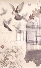 Framed Print - Birdcage Art Vintage Style (Victorian Picture Animal Painting)
