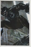 Venom # 3 Dell Otto Virigin Variant   Limited to 600 NM  Combined shipping 2423
