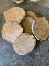 10 Baumscheiben, Holzscheibe, 20-25x 2 cm, Eiche, ohne Rinde