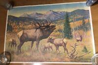 Vintage Elk or Moose Print Catskill R. Lindemann 1967 Wildlife Art New York