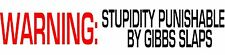 WARNING: Stupidity Punishable By Gibbs Slaps NCIS Vinyl Decal Sticker